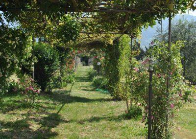 vacances-yoga-en-italie-stage-retraite-de-yoga-en-toscane-jardin