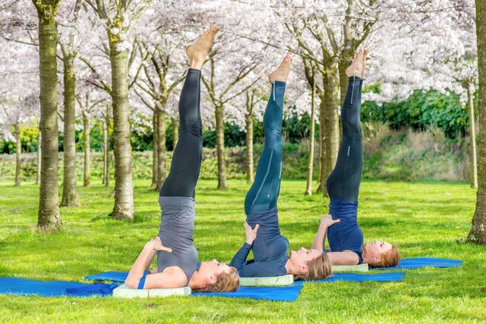 Atelier yoga Orléans: les inversions