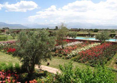 RETRAITE-YOGA-marrakech-maroc-nature-jardins-ecolodge-quaryati-2