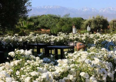RETRAITE-YOGA-marrakech-maroc-nature-jardins-ecolodge-quaryati