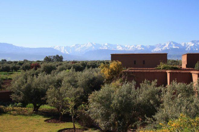 Retraite-YOGA-marrakech-stage-yoga-maroc-ecolodge-quaryati-montagnes-atlas
