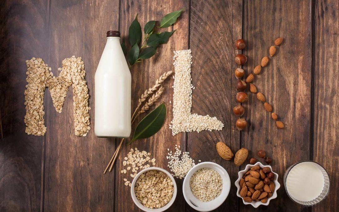 Comment faire soi-même ses laits végétaux ?