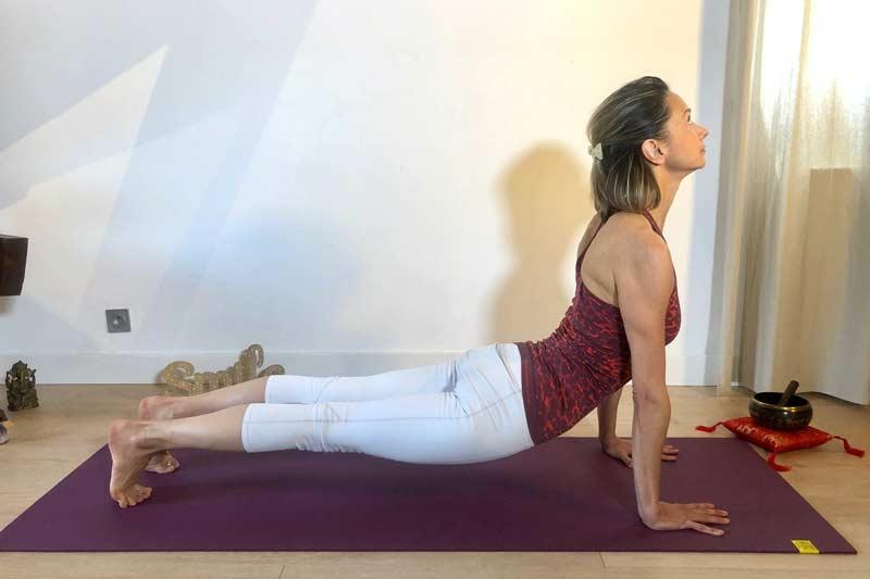 rituel-5-tibetains-yoga-chien-tete-en-haut-chien-tete-en-bas-2