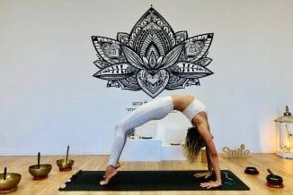 atelier-yoga-en-ligne-zoom-postures-arriere